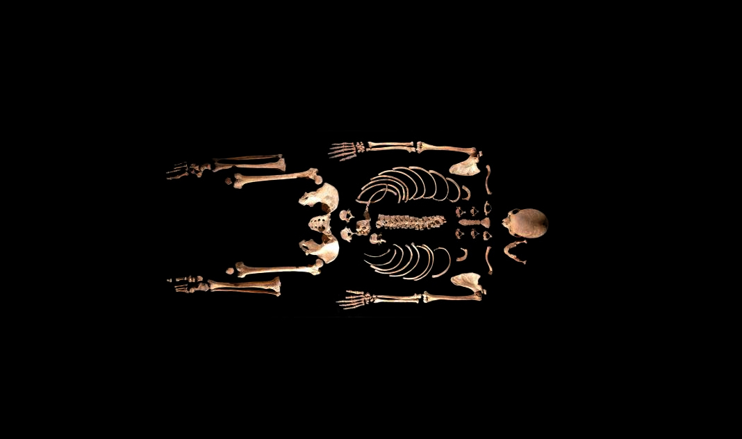 7000‑Year‑Old Skeleton Discovered in Leon