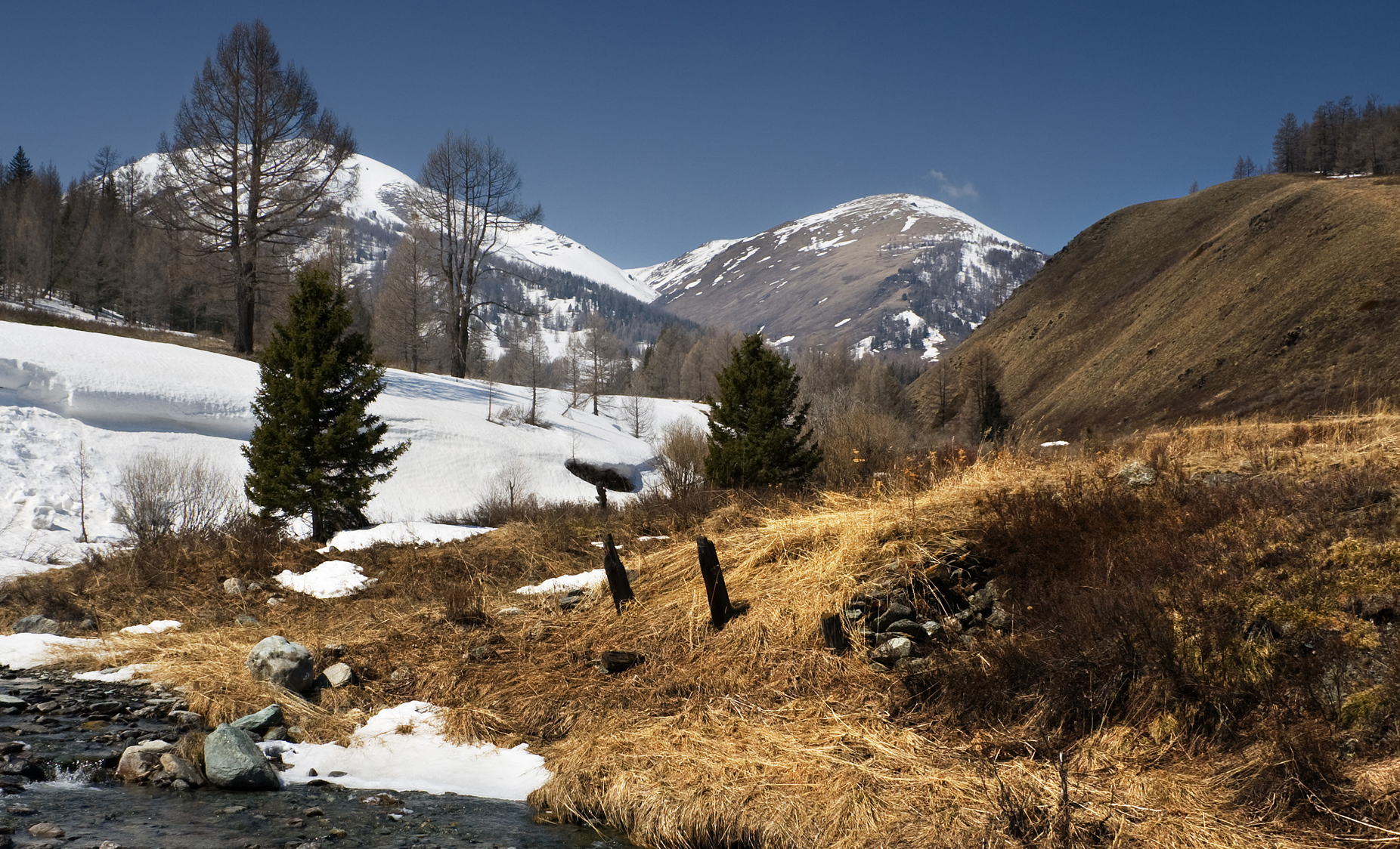 Altai Mountains