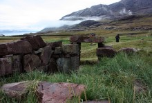 Greenland's viking settlers gorged on seals