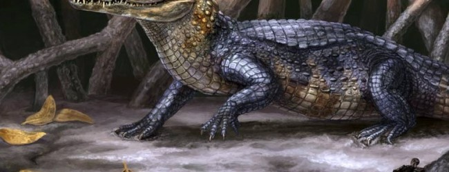 UF scientists discover new crocodilian, hippo-like species from Panama