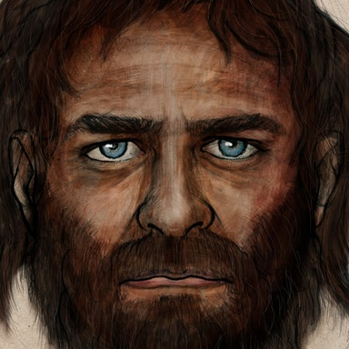 Blue eyes and dark skin, that's how the European hunter-gatherer looked
