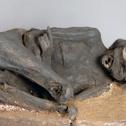 Impact on mummy skull suggests murder
