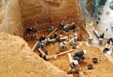 Dating is refined for the Atapuerca site where Homo antecessor appeared