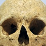 Diet and journeys taken in Sahara Desert thousands of years ago analysed through bone