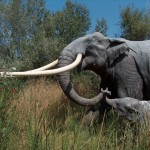 Large mammals were the architects in prehistoric ecosystems