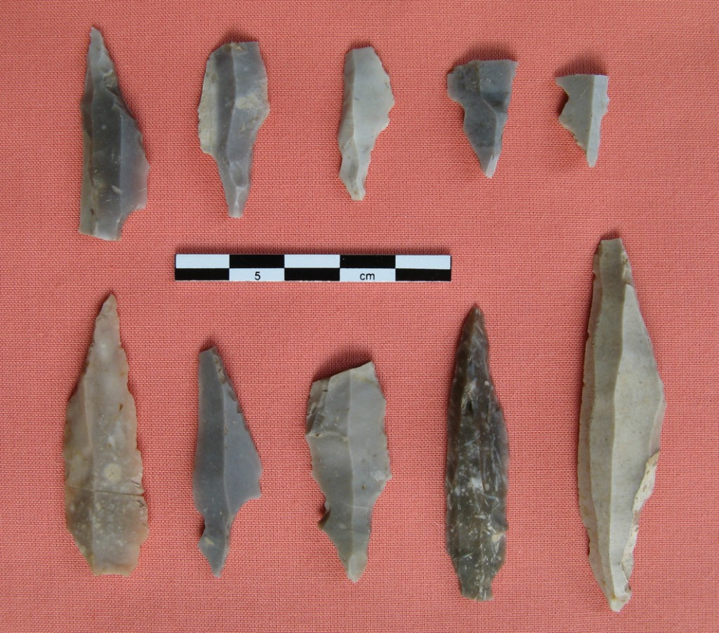 Some of the flint artefacts recovered at Howburn - copyright Alan Saville