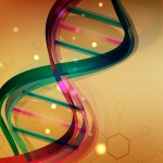 A CNIO team reduces the size of the human genome to 19,000 genes