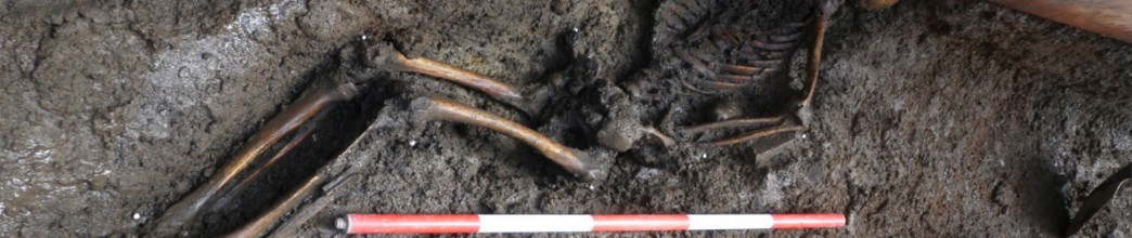 Luas Works Reveal Multiple Human Remains at College Green