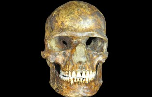 Ancient DNA sheds light on the origin of Europeans