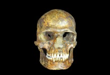 Ancient DNA shows earliest European genomes weathered the Ice Age