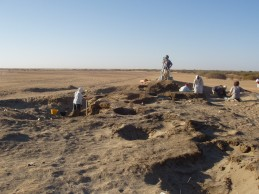 Evidence of domestic cereals in Sudan as early as 7,000 years ago